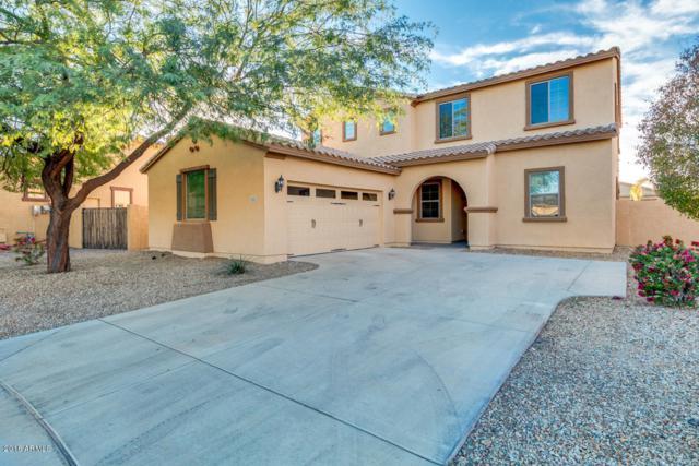 4362 N 156TH Drive, Goodyear, AZ 85395 (MLS #5852006) :: Arizona 1 Real Estate Team