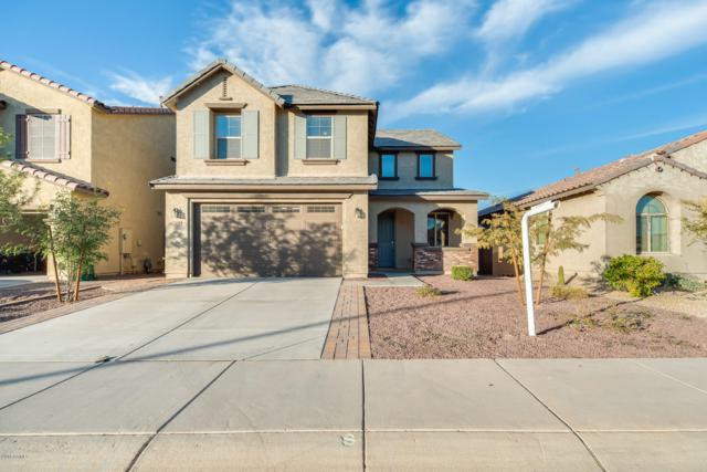 13124 W Tether Trail, Peoria, AZ 85383 (MLS #5852062) :: The W Group