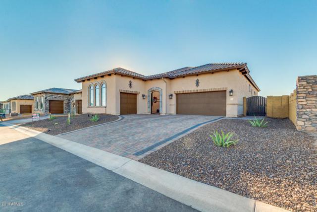 2334 N Sierra Heights, Mesa, AZ 85207 (MLS #5852133) :: Conway Real Estate