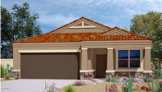 2386 E San Gabriel Trail, Casa Grande, AZ 85194 (MLS #5852138) :: Arizona 1 Real Estate Team