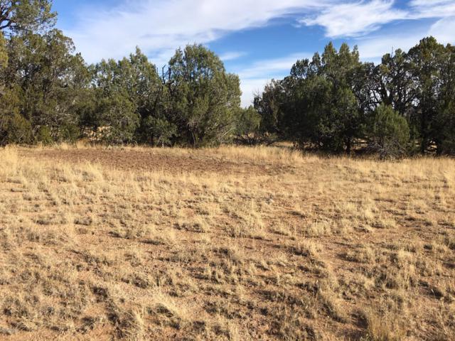 42883 N Walk About Trail, Seligman, AZ 86337 (MLS #5852159) :: Yost Realty Group at RE/MAX Casa Grande