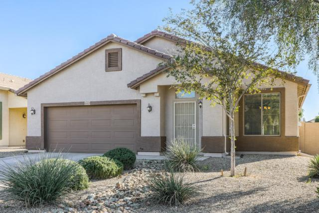 41409 W Laramie Road, Maricopa, AZ 85138 (MLS #5852253) :: Yost Realty Group at RE/MAX Casa Grande