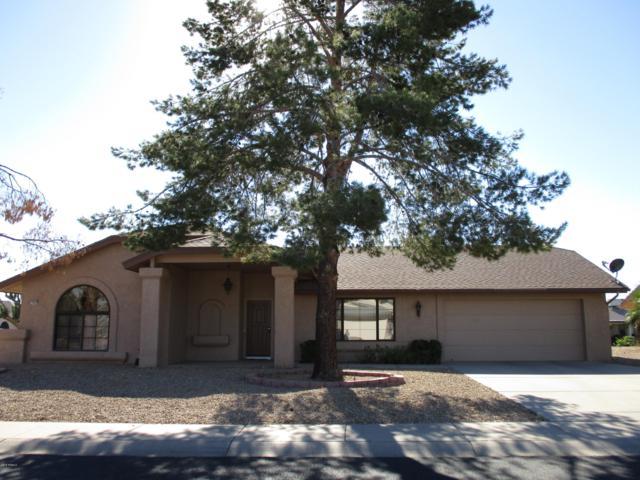 13603 W Gardenview Drive, Sun City West, AZ 85375 (MLS #5852338) :: Conway Real Estate