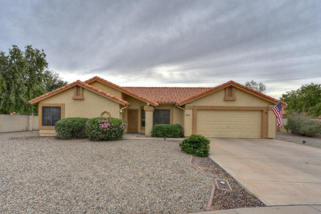 19825 N 94TH Lane, Peoria, AZ 85382 (MLS #5852412) :: Desert Home Premier