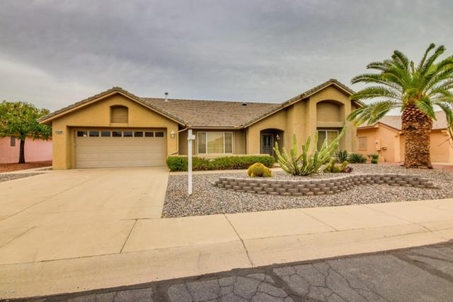 14608 W Blackwood Drive, Sun City West, AZ 85375 (MLS #5852431) :: Conway Real Estate