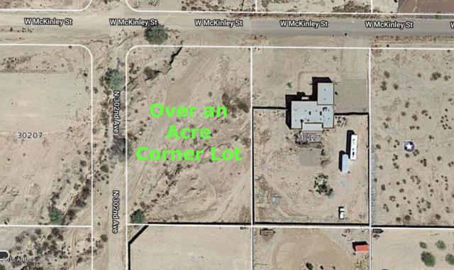 30139 W Mckinley Street, Buckeye, AZ 85396 (MLS #5852479) :: The Daniel Montez Real Estate Group