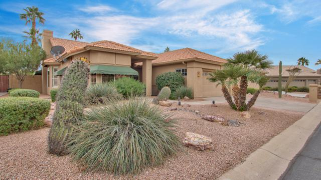 9333 E Jadecrest Drive, Sun Lakes, AZ 85248 (MLS #5852511) :: The Laughton Team