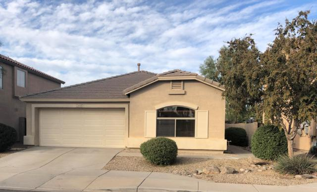 12404 W San Miguel Avenue, Litchfield Park, AZ 85340 (MLS #5852519) :: RE/MAX Excalibur