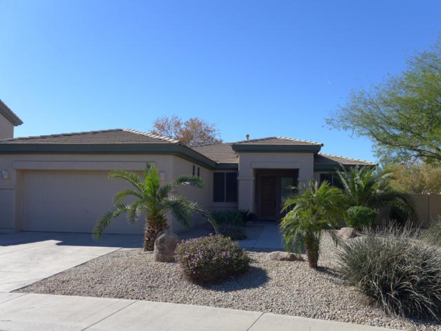 2920 N 141ST Avenue, Goodyear, AZ 85395 (MLS #5852521) :: The Garcia Group