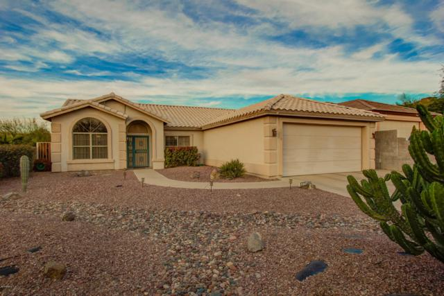 1310 E Michelle Drive, Phoenix, AZ 85022 (MLS #5852545) :: Yost Realty Group at RE/MAX Casa Grande
