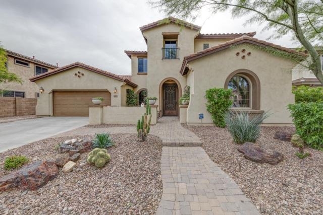 12277 W Lone Tree Trail, Peoria, AZ 85383 (MLS #5852705) :: Conway Real Estate