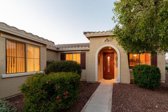 42830 W Whimsical Drive, Maricopa, AZ 85138 (MLS #5852770) :: Revelation Real Estate