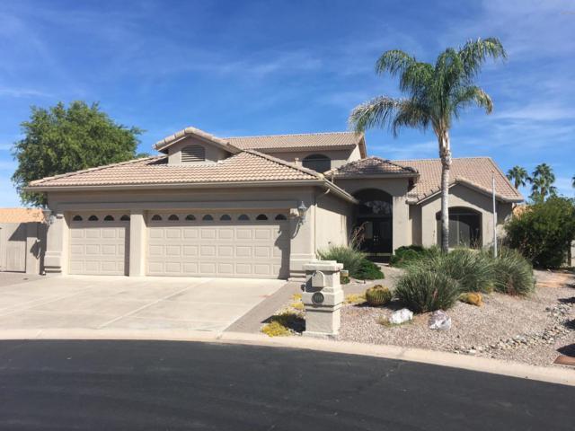 8918 E Hercules Court, Sun Lakes, AZ 85248 (MLS #5852811) :: Conway Real Estate