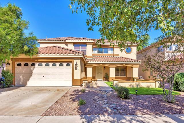 3228 W Cavedale Drive, Phoenix, AZ 85083 (MLS #5852870) :: Yost Realty Group at RE/MAX Casa Grande