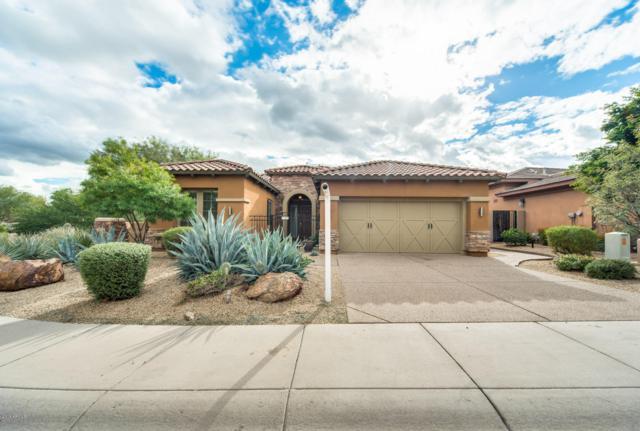 3623 E Tina Drive, Phoenix, AZ 85050 (MLS #5852944) :: Riddle Realty