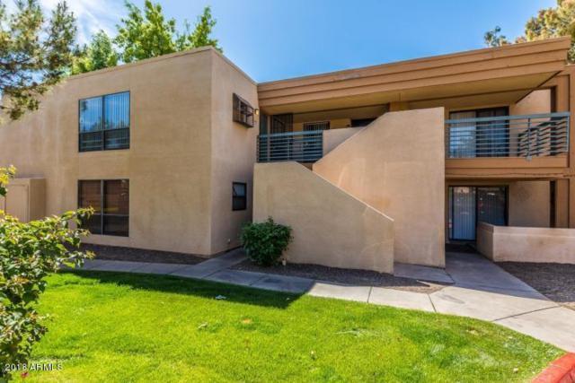 3434 W Danbury Drive A204, Phoenix, AZ 85053 (MLS #5853023) :: Team Wilson Real Estate