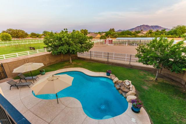6179 S 172ND Street, Gilbert, AZ 85298 (MLS #5853028) :: Scott Gaertner Group