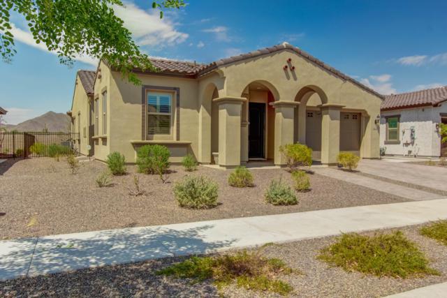 20641 W Minnezona Avenue, Buckeye, AZ 85396 (MLS #5853035) :: Team Wilson Real Estate
