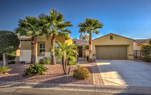 13333 W Junipero Drive, Sun City West, AZ 85375 (MLS #5853059) :: RE/MAX Excalibur