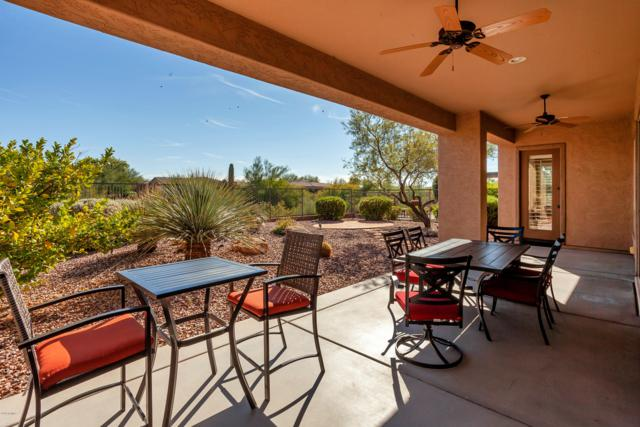 27463 N 130TH Drive, Peoria, AZ 85383 (MLS #5853072) :: The Results Group