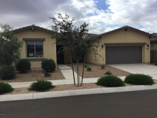 22659 E Duncan Street, Queen Creek, AZ 85142 (MLS #5853121) :: Conway Real Estate