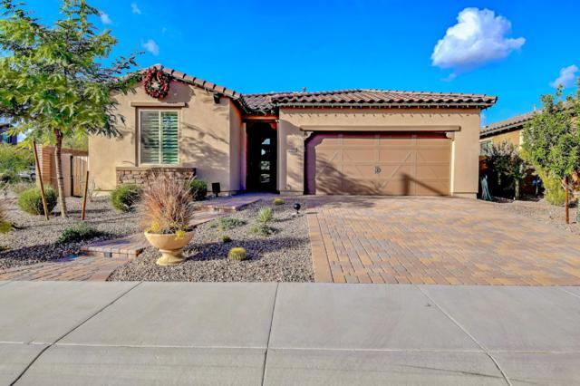 12952 W Ashler Hills Drive, Peoria, AZ 85383 (MLS #5853126) :: Kortright Group - West USA Realty