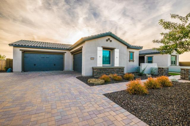6005 E Thunder Hawk Road, Cave Creek, AZ 85331 (MLS #5853183) :: The Laughton Team