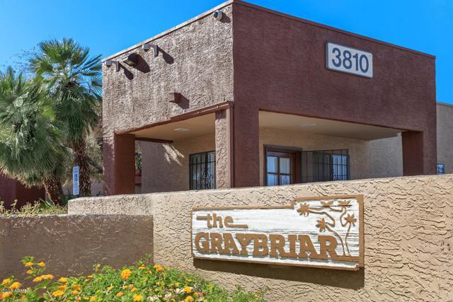 3810 N Maryvale Parkway #1007, Phoenix, AZ 85031 (MLS #5853249) :: Team Wilson Real Estate