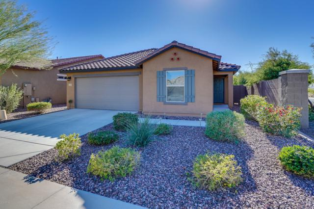 11931 W Honeysuckle Court, Peoria, AZ 85383 (MLS #5853262) :: The Results Group