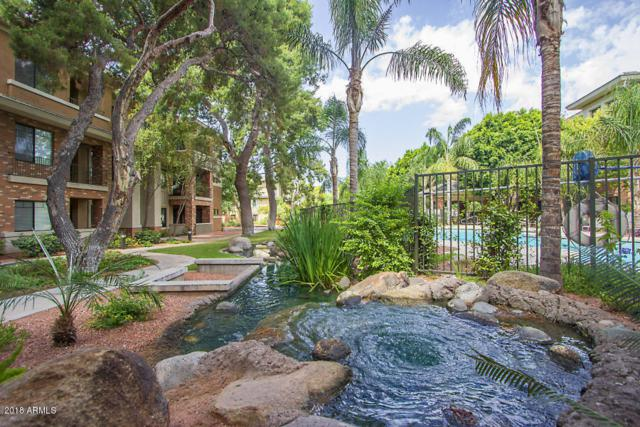 2989 N 44TH Street #3017, Phoenix, AZ 85018 (MLS #5853265) :: Phoenix Property Group
