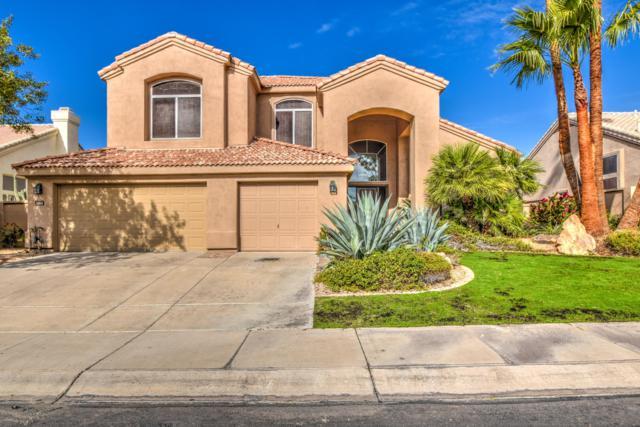 11614 E Appaloosa Place, Scottsdale, AZ 85259 (MLS #5853300) :: Gilbert Arizona Realty
