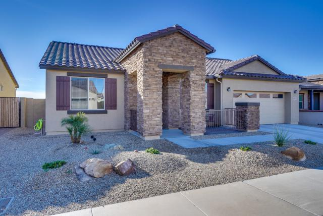 18097 W Cedarwood Lane, Goodyear, AZ 85338 (MLS #5853332) :: The Everest Team at My Home Group