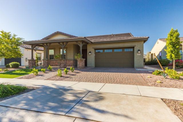 20631 W Minnezona Avenue, Buckeye, AZ 85396 (MLS #5853351) :: Team Wilson Real Estate