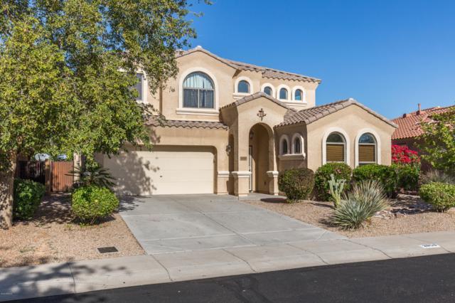 2950 E Quiet Hollow Lane, Phoenix, AZ 85024 (MLS #5853369) :: The W Group