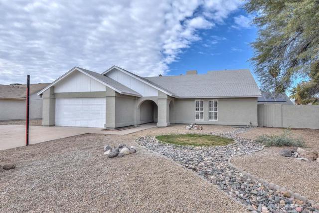 11330 N 80TH Drive, Peoria, AZ 85345 (MLS #5853532) :: Team Wilson Real Estate