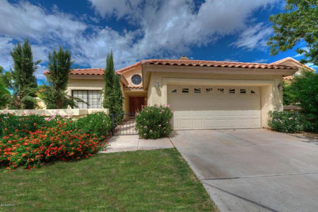 8866 S Grandview Drive, Tempe, AZ 85284 (MLS #5853547) :: Relevate | Phoenix