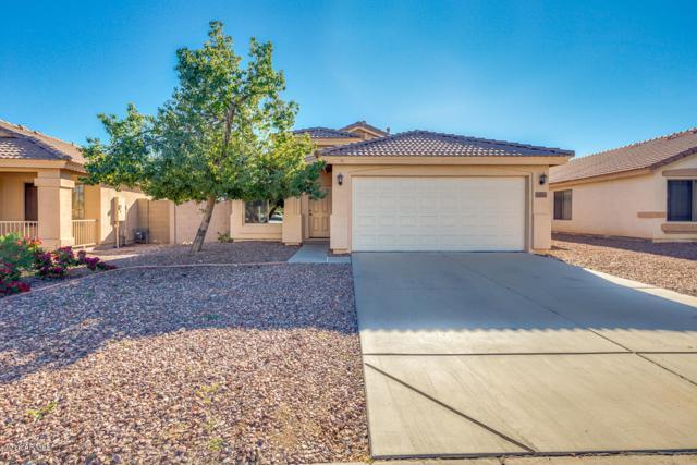 13151 W Caribbean Lane, Surprise, AZ 85379 (MLS #5853614) :: Conway Real Estate