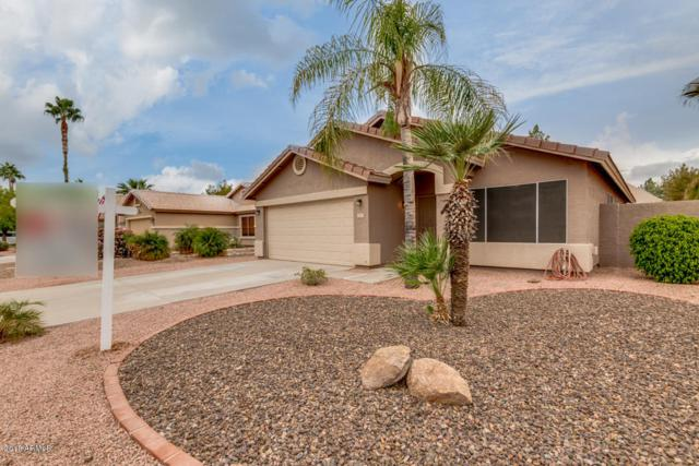 4030 E Libra Avenue, Gilbert, AZ 85234 (MLS #5853649) :: Arizona Best Real Estate