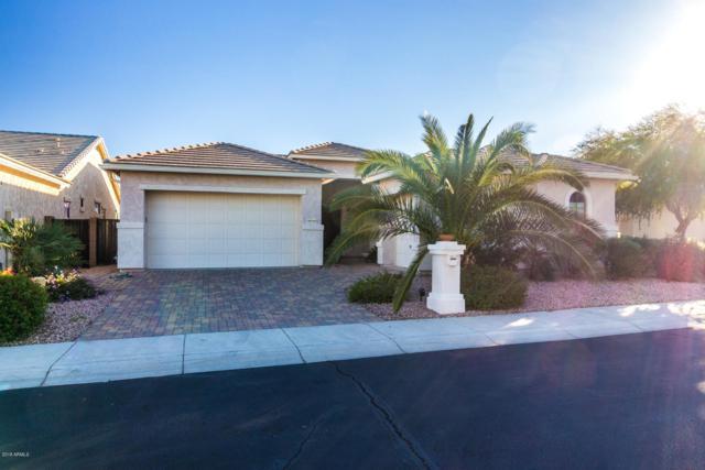 18245 W Weatherby Drive, Surprise, AZ 85374 (MLS #5853693) :: Desert Home Premier