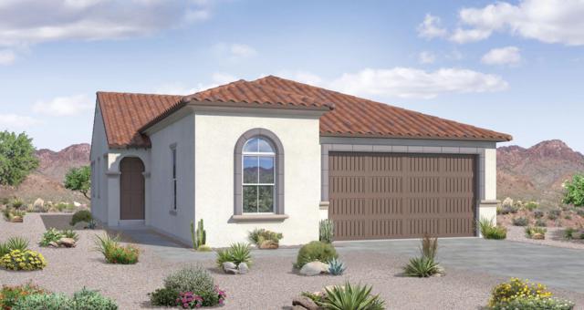 10042 W Cashman Drive, Peoria, AZ 85383 (MLS #5853768) :: The Results Group