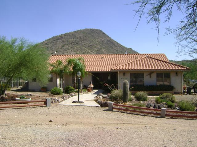 43221 N 22ND Street, New River, AZ 85087 (MLS #5853875) :: The W Group