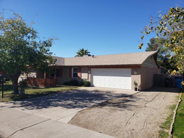 2150 W Meadow Drive, Phoenix, AZ 85023 (MLS #5853916) :: Yost Realty Group at RE/MAX Casa Grande