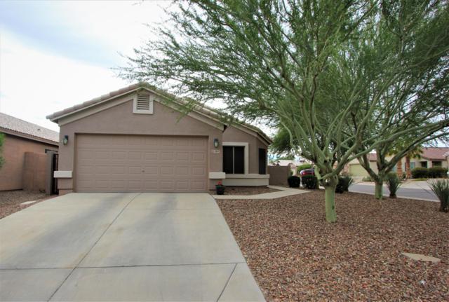 3869 W Carlos Lane, Queen Creek, AZ 85142 (MLS #5853940) :: Realty Executives