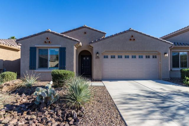 4789 W Posse Drive, Eloy, AZ 85131 (MLS #5853954) :: Keller Williams Legacy One Realty