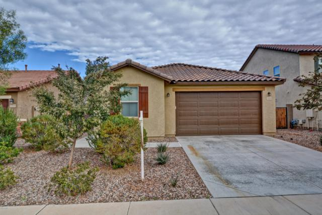 11916 W Honeysuckle Court, Peoria, AZ 85383 (MLS #5853981) :: The Results Group
