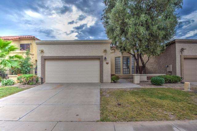 9720 N 105TH Street, Scottsdale, AZ 85258 (MLS #5853982) :: My Home Group