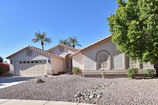 20376 N 66TH Drive, Glendale, AZ 85308 (MLS #5854047) :: REMAX Professionals
