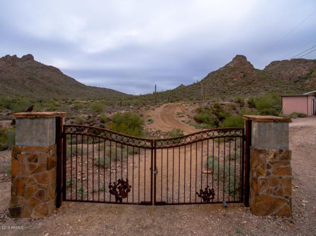 000 N Idaho Road, Apache Junction, AZ 85119 (MLS #5854083) :: Yost Realty Group at RE/MAX Casa Grande