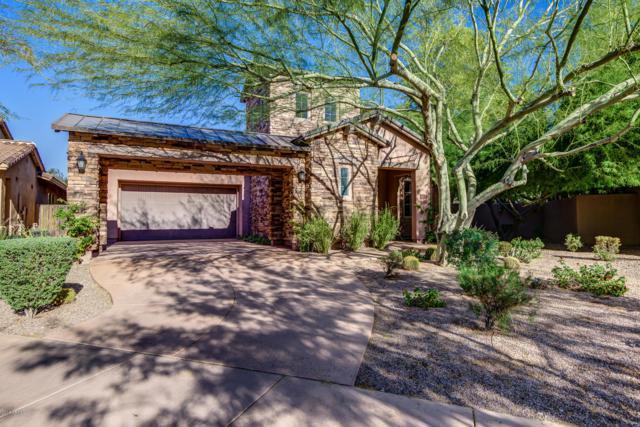 18387 N 93rd Way, Scottsdale, AZ 85255 (MLS #5854088) :: RE/MAX Excalibur