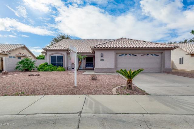 6011 W Tonopah Drive, Glendale, AZ 85308 (MLS #5854092) :: REMAX Professionals